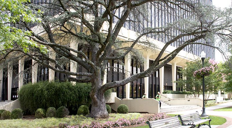 huntsville-lawyer-real-estate-transactions